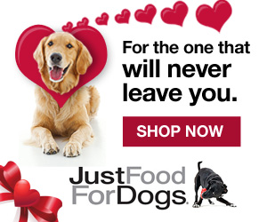 Just Food for Dogs banner saying For the one that will never leave you