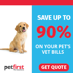 Nationwide Pet Insurance Reviews 5 Scary Items And More Herepup