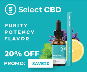 5 Reasons CBD Oil Edibles Should Be On Your Menu And Where To Buy Them Online