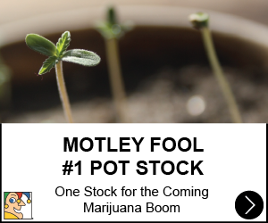 Motley Fool Pot Pick