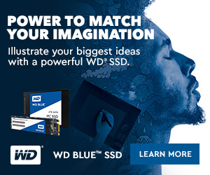 WD Blue Solid State Drives